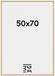 Kehys New Lifestyle Akryylilasi Kullanvärinen 50x70 cm