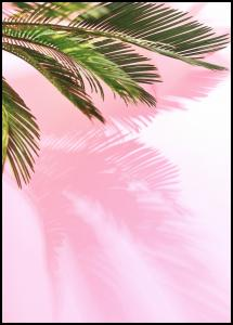 Palm Leaf Juliste