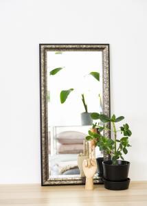 Peilit Ottsjö Harmaanruskea 40x80 cm