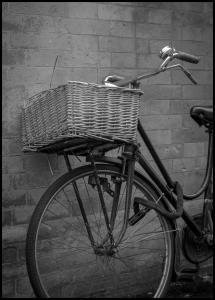 Bicycle Basket Juliste