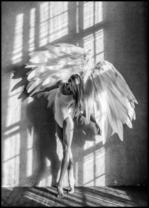Angel Women Posing II Juliste
