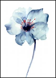 Aquarelle Flower - Blue Juliste