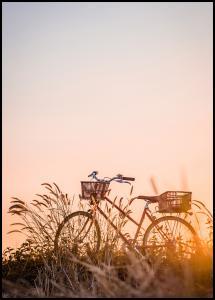 Bike Ride In The Sunset Juliste