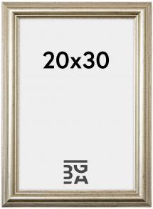 Västkusten Hopeanvärinen 20x30 cm