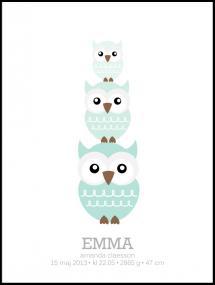 Owls Birth Poster II Green