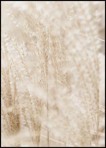 Bright Grass Juliste