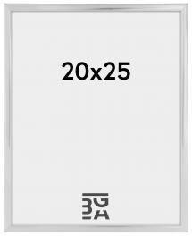 New Lifestyle Hopeanvärinen 20x25 cm