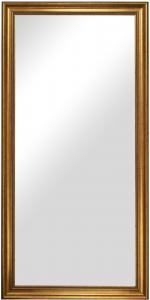 Peili Rokoko Kulta 50x100 cm