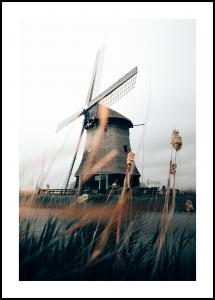 Dutch Windmill Juliste