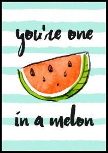 You´re one in a melon Juliste