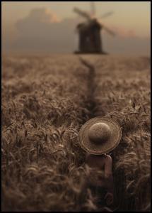 The Boy In The Field Juliste