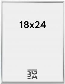 Can-Can Hopeanvärinen 18x24 cm