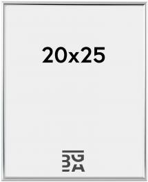 Can-Can Hopeanvärinen 20x25 cm