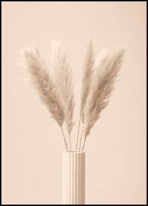 Pampas Grass III Juliste