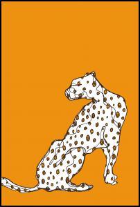 Cheetah Juliste