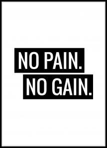 No Pain No Gain Juliste