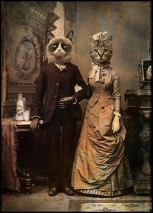 Cat Couple Juliste