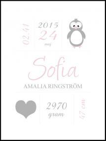 Penguin Birth Poster Pink