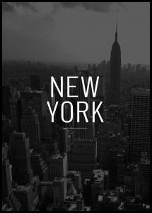New York View Juliste