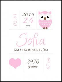 Owl Birth Poster Pink