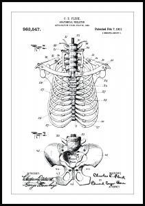 Patentti Piirustus - Luuranko II Juliste
