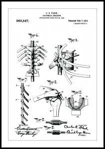 Patentti Piirustus - Luuranko III Juliste