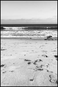Malibu Beach sand Juliste