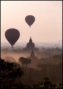 Hot Air Balloons Juliste