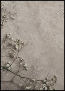 Stone Flowers Juliste