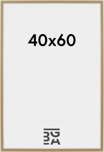 Kehys Galant Tammi 40x60 cm