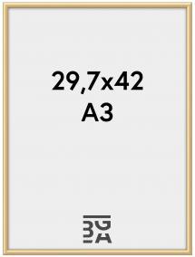 Kehys New Lifestyle Akryylilasi Kullanvärinen 29,7x42 cm (A3)