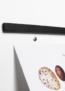 Wall Sticks Magnets Black Oak 50 cm