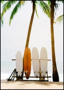 Surf Boards Juliste