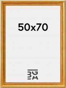 Kehys Rokoko Kullanvärinen 50x70 cm