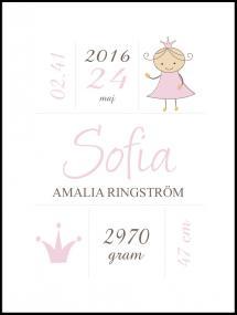 Princess Birth Poster Pink