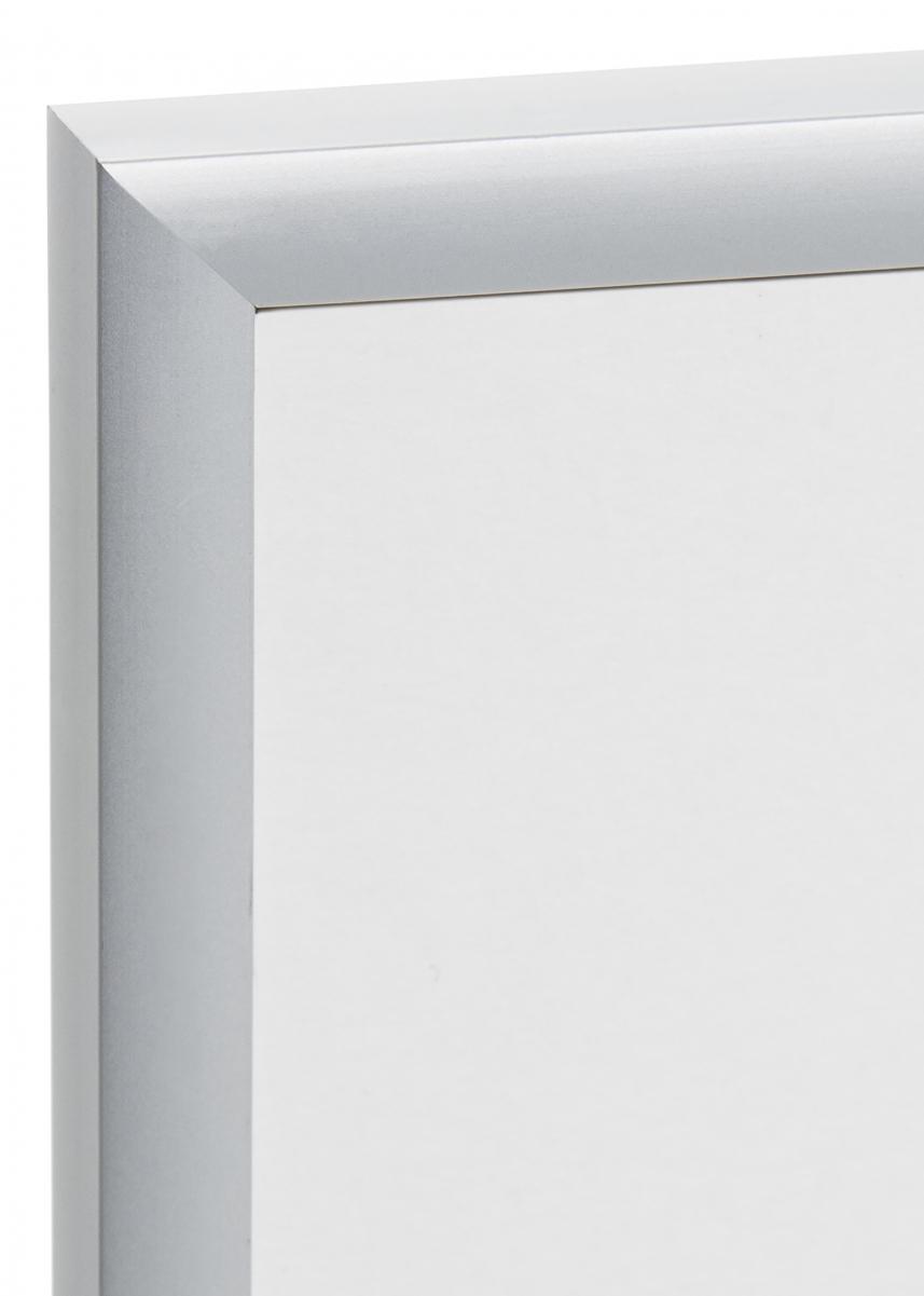 Expo Matta heijastamaton lasi Hopeanvärinen 18x24 cm